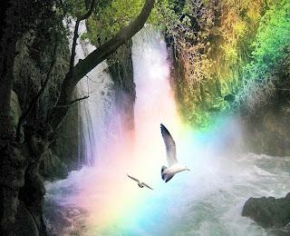 Resultado de imagen de paz luz