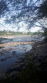 Rivière des Prairies l'été, roches, rivage