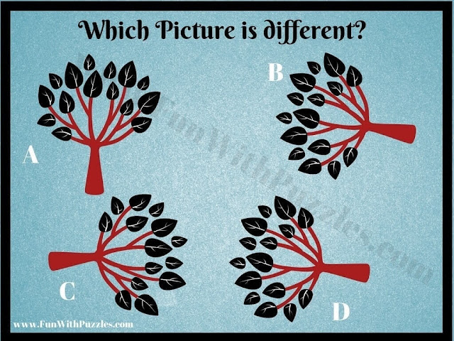 Picture Puzzle for Kids