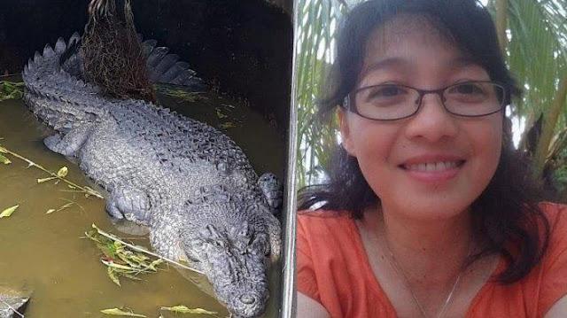 comida viva por crocodilo