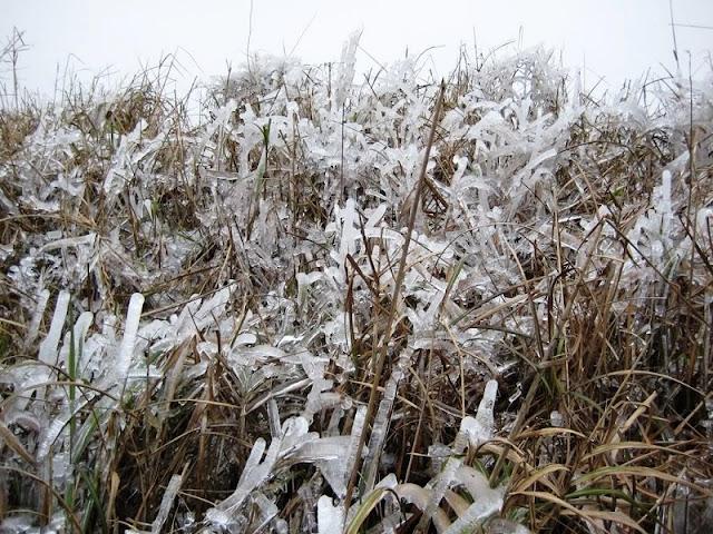 Ha Giang romantic snowy season 1