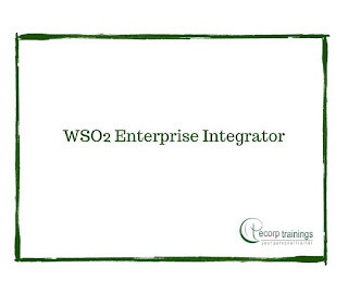 WSO2 Enterprise Integrator for Administrators