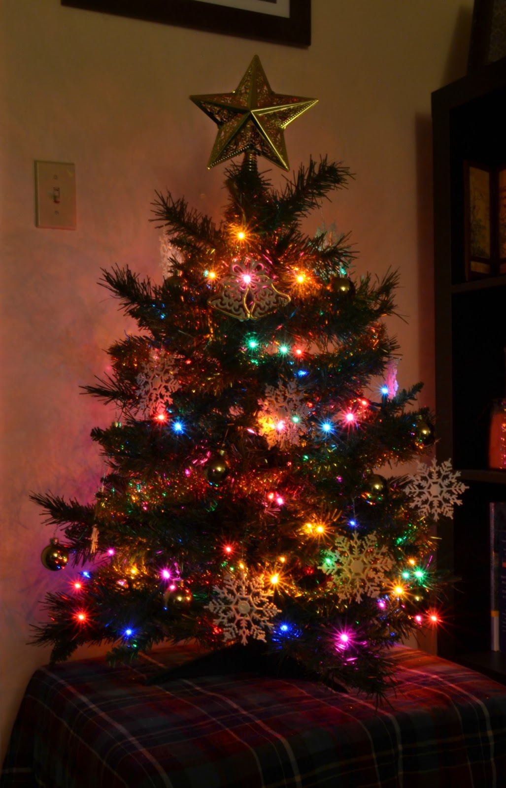Butterfly Days: Our Little Christmas Tree