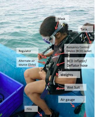 BWRAF Pre-Dive Check