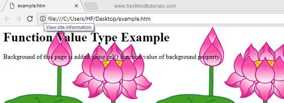 CSS-function-value-type-example-in-Hindi