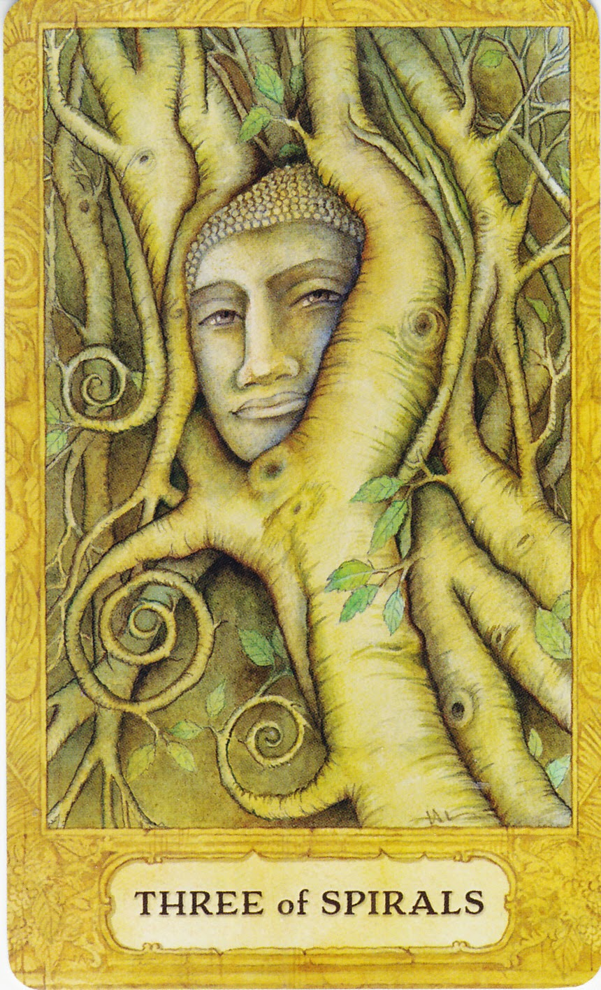 Rowan Tarot December 2012: Rowan Tarot: Who Says Life Is What Happens When You're