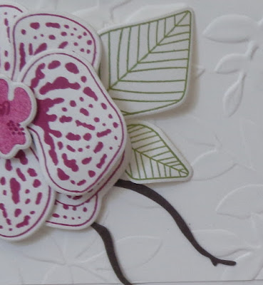 #stampinupuk, Craftyduckydoodah!, Climbing Orchid, May 2018 Coffee & Cards Project, Supplies available 24/7 from my online store, Stampin' Up! UK Independent Demonstrator Susan Simpson, #lovemyjob,