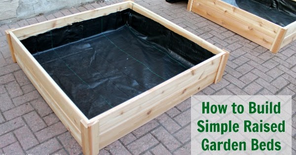 How to build raised garden bed boxes growing vegetables for How to make a raised garden