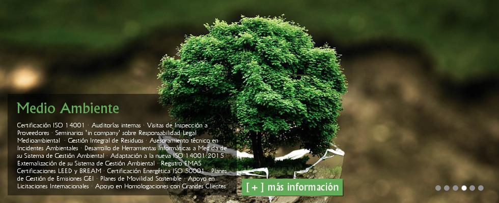 Gestión Ambiental ISO 14001: Auditorías internas · Visitas de Inspección a Proveedores · Seminarios 'in company' sobre Responsabilidad Legal Medioambiental  · Gestión Integral de Residuos · Asesoramiento técnico en Incidentes Ambientales · Desarrollo de Herramientas Informáticas a Medida de su Sistema de Gestión Ambiental · Adaptación a la nueva ISO 14001:2015 · Externalización de su Sistema de Gestión Ambiental · Registro EMAS · Certificaciones LEED y BREAM · Certificación Energética ISO 50001 · Planes de Gestión de Emisiones GEI · Planes de Movilidad Sostenible · Apoyo en Licitaciones Internacionales · Apoyo en Homologaciones con Grandes Clientes.