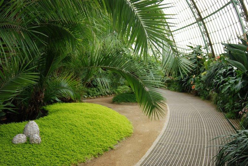 Palm House en Invernaderos Reales de Laeken