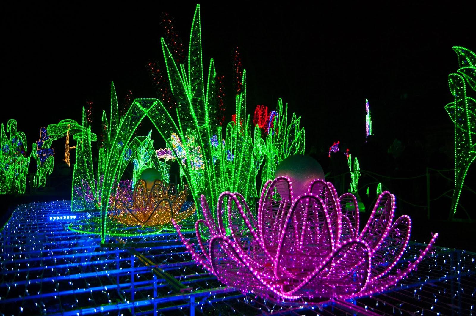 Trzy Włóczykije Pałac W Wilanowie I Królewski Ogród światła
