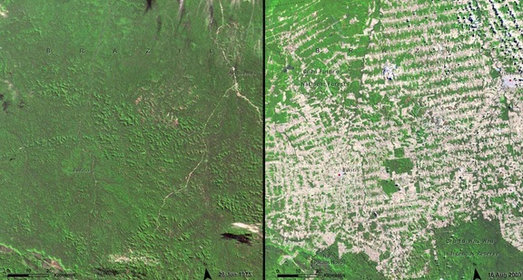 You Still Think Climate Change Is A Hoax These 20 Before-And-After Photos Will Leave You Speechless! - DEFORESTATION IN RONDONIA, BRAZIL, 1975 AND 2009