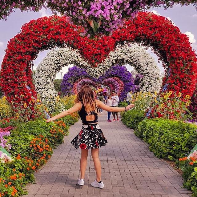 Dubai, Miracle Garden. Alessia Siena