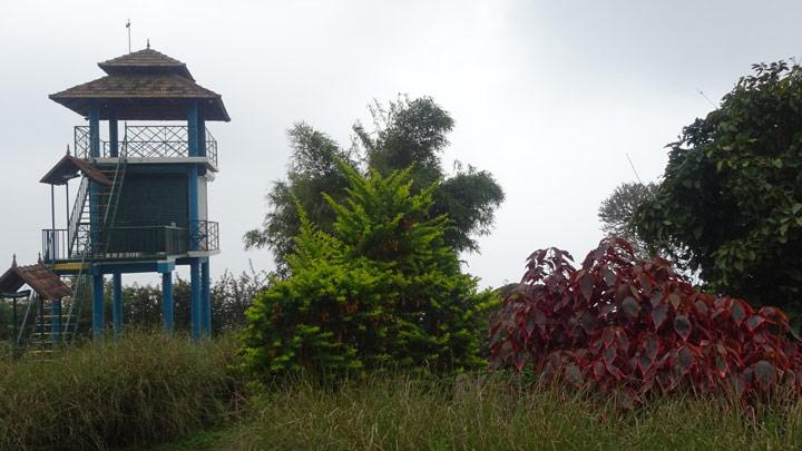 Best Resorts in Thekkady