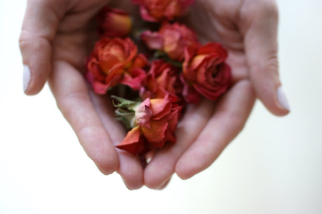 Blumen für dich www.nanawhatelse.at Zitat des Tages