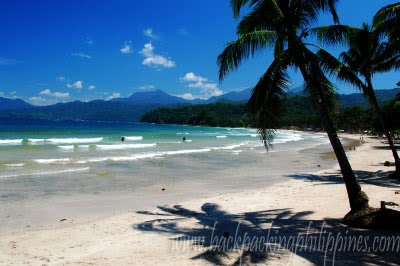 Backng Philippines And Asia Palawan Accommodations Beach