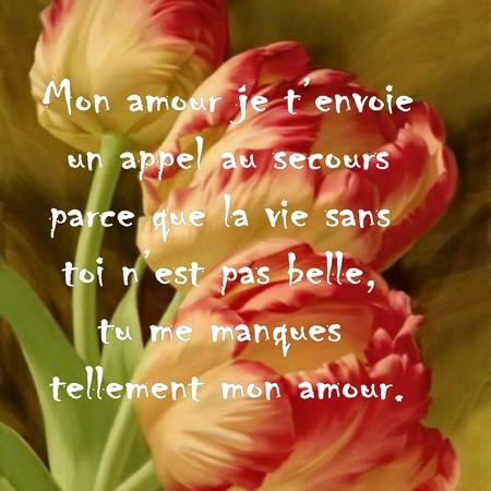 Petit Sms Mignon Messages Et Textes Damour