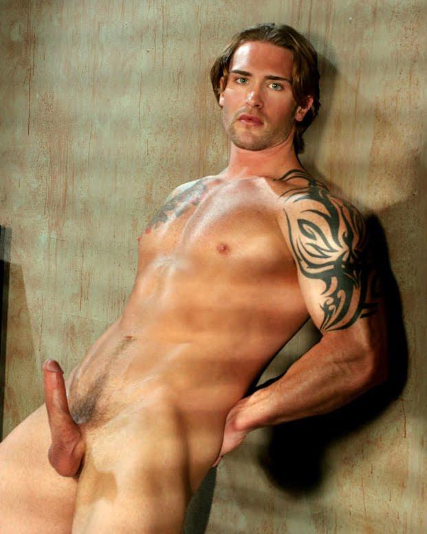 David Taylor Porn Star