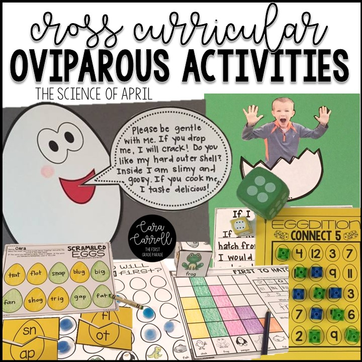 Image of: Viviparous The Kids Love To Predict Which Animals Will Hatchu2026and They Can Always Eliminate Any Animal That Isnt Oviparous Because Weve Learned That Oviparous The First Grade Parade Learning About Oviparous Animals The First Grade Parade