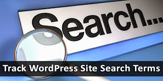 How To Track Site Search Terms in WordPress?