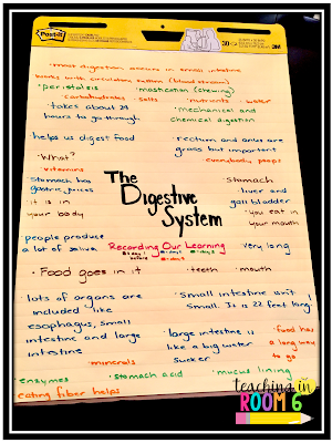 Creating an anchor chart of student learning on the digestive system in fifth grade.