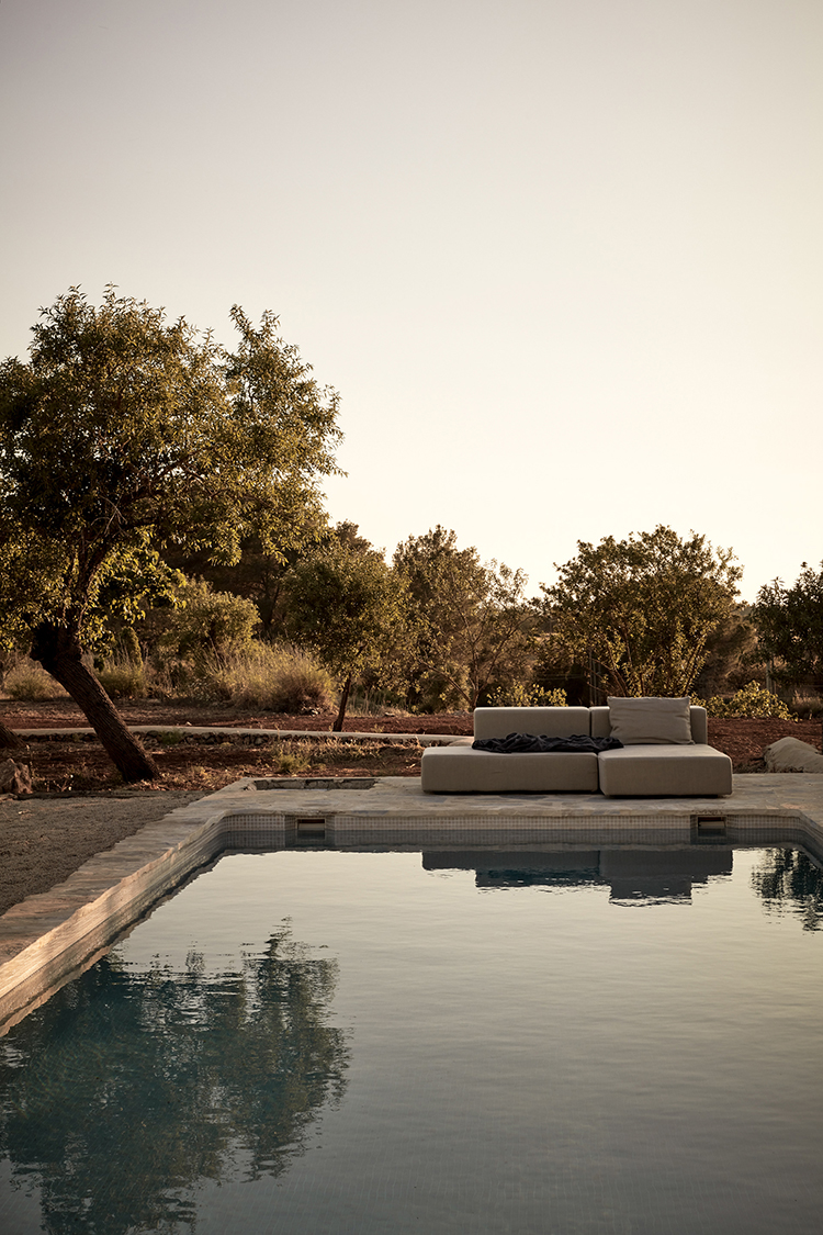 Natural pool and olive tree in a private house in Ibiza. Interior Design & Styling  by Annabell Kutucu   Photography by Steve Herud