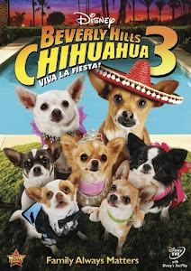 Những Chú Chó Chihuahua Ở Đồi Beverly 3