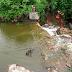 Santa Quitéria recebe 70mm de chuva; Água volta a passar por cima de pontes