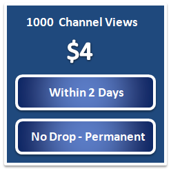 Buy Twitch Followers Cheap | $2 For 100 Followers | Twitch