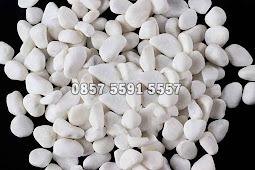 Harga Jual Batu Koral Sikat Putih Italy