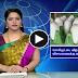 duplicate plastic egg on tamilnadu!?   TAMIL NEWS