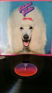 pics photo album vinyle vinyl picture anglais rock chien