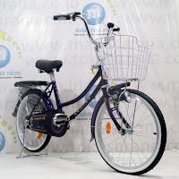 20 city bike phoenix