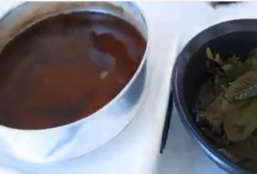 Contoh Dan Dasar Karya Ilmiah Pembuatan Sabun Herbal Dari Daun