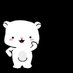 Popo polar bear