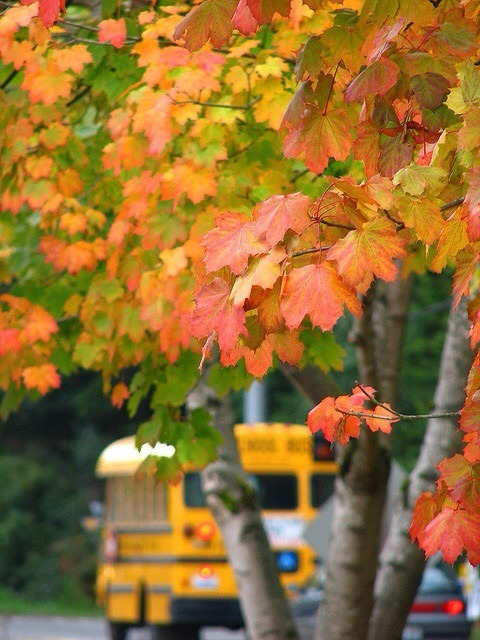 School bus in the Fall