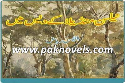 Nelson Mandela Ke Des Mein Urdu Book By Balqees Riaz