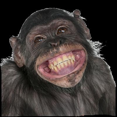 tube de chimpance sonriente