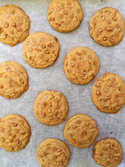 Delicious brown butter cookies with caramel or butterscotch chips make a perfect any time of day snack !