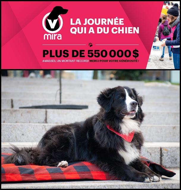 Fondation MIRA: 3e édition de La journée qui a du chien