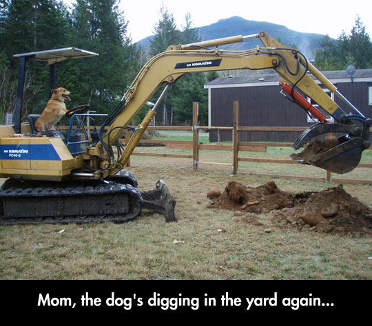 Worlds Funniest Memes 6