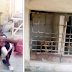 The 5yrs Old Attacked By Landlord's Dog In Ikorodu Lagos, Is Dead