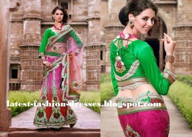 back neck blouse for full sleeve with pink colour saree