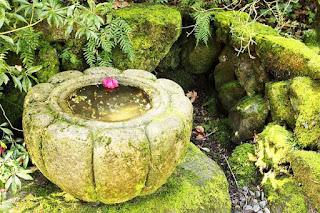 الحديقة اليابانية المذهلة أمريكا japanesegarden14.jpg