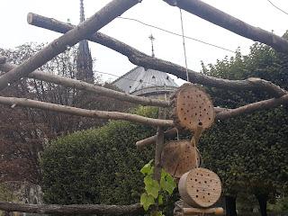 Notre Dame i kućice za insekte