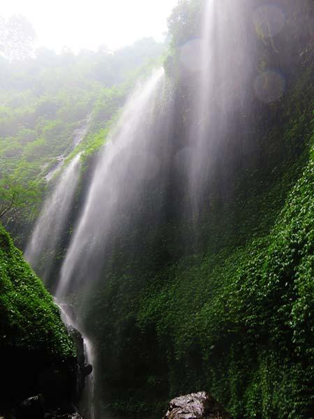 Keeksotisan Kawasan Air Terjun Mdakaripura