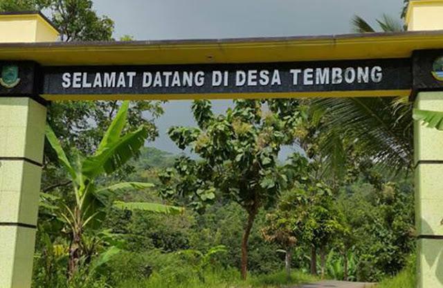 Desa Tembong