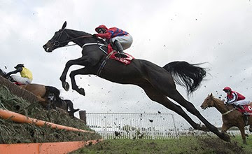 Sprinter Sacre. Picture: Edward Whitaker - Racing Post