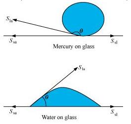 water ncert solutions