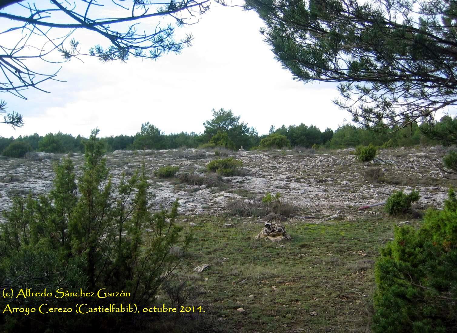arroyo-cerezo-castielfabib-tres-reinos-camino